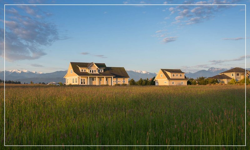 house-in-green-meadow.jpg