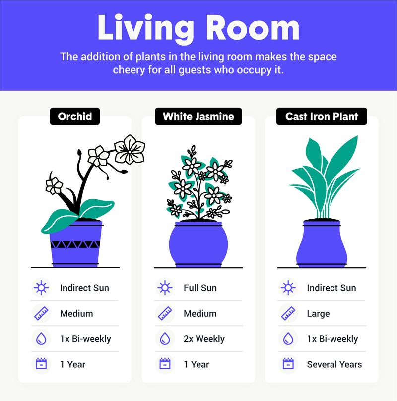 best houseplants for living room image