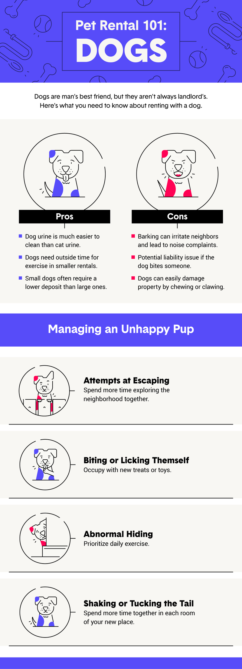 pet-rental-101-dogs.png