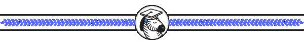 Scholarship border