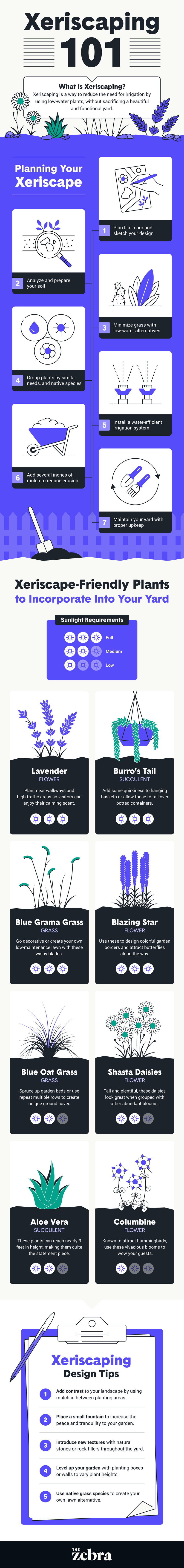 xeriscaping 101 infographic